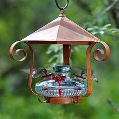 Time to pull out the hummingbird feeders.