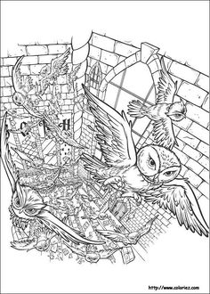 Harry Potter Coloring Pages Free Printable Online