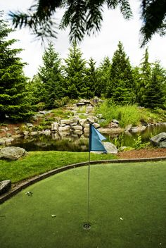 Willows Green Put Put Golf Course in Redmond, WA. They have fun events like Puttin' And Pizza night... check it out!