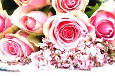 Valentinstag Rose