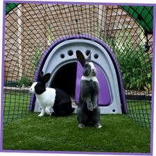 omlet.co.uk - the eglu for rabbits and guinea pigs