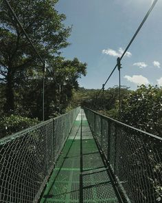 Suspension bridge adventure in the clouds. Monteverde, Costa Rica. Flights+Barrels Travel Photography.