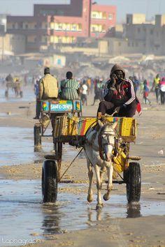 Ivory Coast, Donkeys, Ghana, West Coast, Morocco, South Africa, Roots, Beautiful People, Around The Worlds