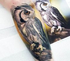 Owl tattoo by Coen Mitchell