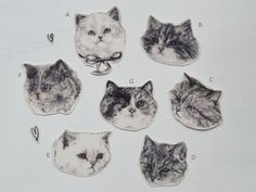 cat temporary tattoo