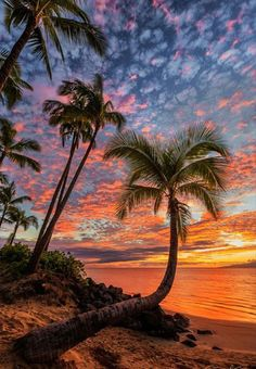 Sunset is the sunset in the afternoon. That time is beautiful scenery. We will present an article about sunset quotes love. Beautiful Sunset, Beautiful Beaches, Beautiful World, Beautiful Islands, Beautiful Moments, Simply Beautiful, Beach Photography, Landscape Photography, Beautiful Nature Photography