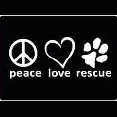 Peace. Love. Rescue.
