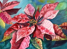 Poinsettia from Hawaii Original Watercolor Painting by kauaiartist