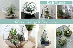 DIY : Créer un joli Terrarium - AURELIE