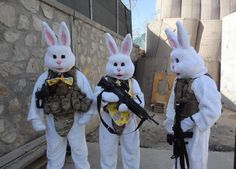 Happy Easter all. The Easter bunny has backup and some new equipment this year. Pictures Of The Week, Weird Pictures, Happy Easter Everyone, Military Humor, Military Style, Cursed Images, Easter Bunny, Easter Eggs, Pikachu