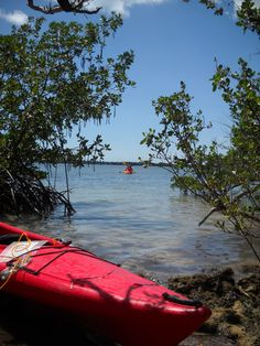 If you've ever dreamed about exploring a deserted tropical island, here's your chance: Take your kayak down to the Florida Keys and paddle out to Indian Key State Park.
