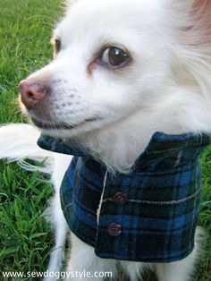 DIY Pet Coat Pattern – Sewing it Together! This is part 2 of our coat tutorial. To get your pattern pieces, visit our first tutorial on making the pattern here. Since we are recycling junkie… Dog Coat Pattern, Coat Pattern Sewing, Sewing Patterns, Dog Clothes Patterns, Coat Patterns, Dog Jacket, Puppy Clothes, Dog Sweaters, Dog Costumes