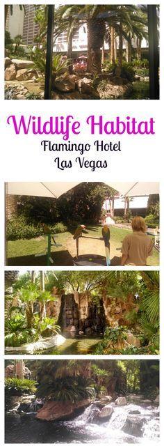 The Flamingo Wildlife Habitat in Flamingo Hotel Las Vegas