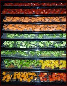 Op deze site staan heel veel groentes en hoe je ze moet drogen. Heel handig. Dehydrating Vegetables