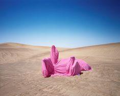 Still Life with Camel, 2016, United Emirates, (c)
