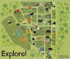 Zebra at Marwell zoo  animals  Pinterest  Marwell zoo Zoos and