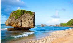 Breathtaking scenery along the coastline of Barbados