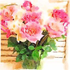 Roses - thanks!