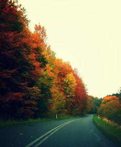 Color full Road in Poland . Polska taka piękna
