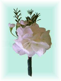 Occasions Florist  Murphy NC  Hydrangea Boutonniere   Great for any wedding