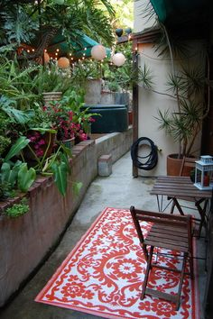 Lots of plants, pretty lights, outdoor rug - Tiny Patio