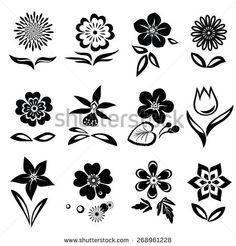 Chamomile, primula,  anemone, tulip, gowan, orchid, dog-daisy, petunia flower set. Spring flowers. Black cutout silhouettes on white background.  Isolated symbols of flowers and leaves. Vector