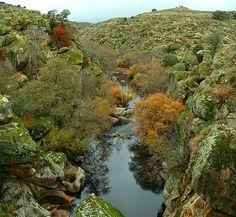 RíoIbor - Extremadura - Wikipedia, la enciclopedia libre
