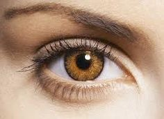 Honey colored contact lenses for dark brown eyes.