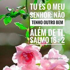 """""""A minha alma disse ao Senhor : Tu és o meu Senhor; não tenho outro bem além de ti."""" Salmos 16:2"""