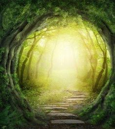 A spasso nel bosco con i puffi il magico bosco
