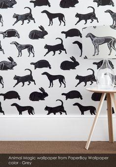 Animal Magic wallpaper from PaperBoy Wallpaper in Grey