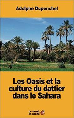 Le savoir en poche: Les Oasis et la culture du dattier dans le Sahara ...