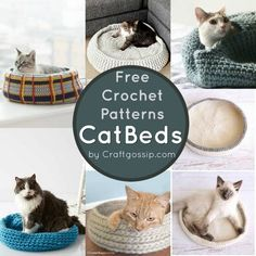 These free crochet patterns are all for cat sized beds. All of the patterns below were free at the time of writing this article. All of the Cat bed patterns are Crochet and use different yarn and c… Chat Crochet, Crochet Home, Crochet Cat Beds, Crochet Pet, Crochet Mittens Free Pattern, Crochet Patterns, Free Crochet, Crochet Designs, Crochet Ideas
