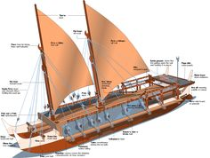 Hōkūle'a Image Gallery (From Model Ship Building, Boat Building, Jet Surf, Kayak Boats, Canoes, Scale Model Ships, Shipping Container Home Designs, Cat With Blue Eyes, Wooden Ship