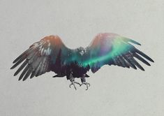 Aurora Borealis - Andreas Lie