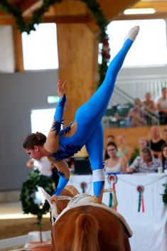 Vaulting, Sport, Equestrian, Horses, Horse Pictures, Sleep, Live, Inspiration, Pictures