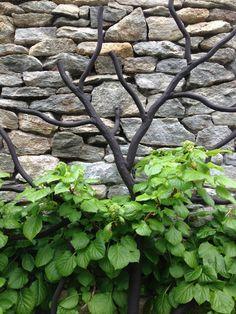 Lovely Garden Trellis created by  Oak Hill Iron-
