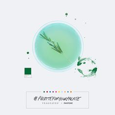 Click to see the creation of a Cocktail, inspired by Organic Long Life Green, PANTONE 349C, and the mood: Enlightened