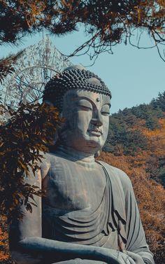 Wallpaper seoraksan sculpture south korea bronze buddha buddhism