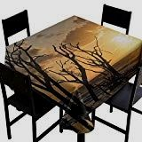 Hinxinv Table Cover for Kitchen Driftwood,Sea Theme Sunrise at The Beach Trees Without Leaves and Cloudy Sky Digital x Dinner Picnic Table Cloth - Driftwood 4 Us Sky Digital, Digital Image, Driftwood Kitchen, Sea Theme, Square Tables, Table Covers, Picnic Table, Wood Table