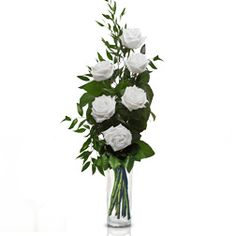 Friendship: 6 white roses