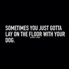Hahahaha so funny to read this as I lay on the floor with my dog. - Funny Dog Quotes - The post Hahahaha so funny to read this as I lay on the floor with my dog. appeared first on Gag Dad. I Love Dogs, Puppy Love, Good Vibe, Border Collie, Wise Words, Decir No, Chihuahua, Maltese Dogs, Corgi Puppies