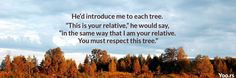 """He'd introduce me to each tree. """"This is your relative,"""" he would say, """"in the same way that I am your relative. You must respect this tree."""""""