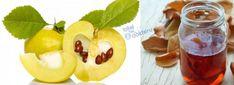 AYVA YAPRAĞI ÇAYI Honeydew, Plum, Detox, Pasta, Fruit, Health, Food, Health Care, Essen