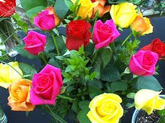 Red Roses and other beautiful flowers