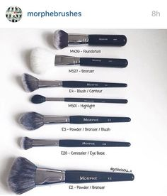 Morphy brushes