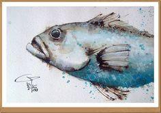 Fish - Pesce - Gianluigi Punzo - Naples - Napoli - Italy - Italia - Watercolor - Acquerello - Aquarelle - Acuarela