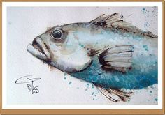 Fish - Pesce - Gianluigi Punzo - Naples - Napoli - Italy - Italia - Watercolor - Acquerello - Aquarelle - Acuarela