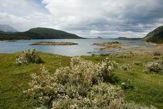 Bahía la Pataia, Parque Nacional Tierra del Fuego, AR
