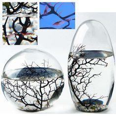 Ecosferas